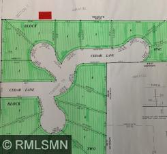 1317 Cedar Lane Property Photo - Litchfield, MN real estate listing