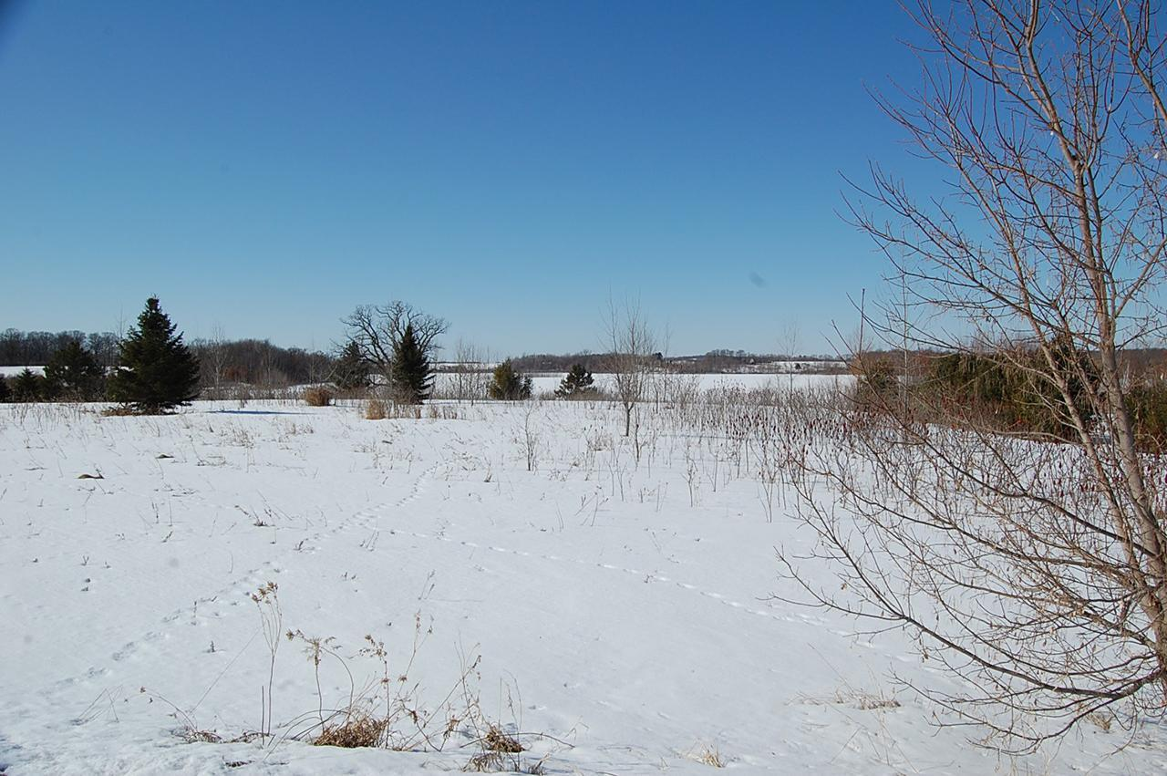 Lot 7 168th Property Photo - Dresser, WI real estate listing