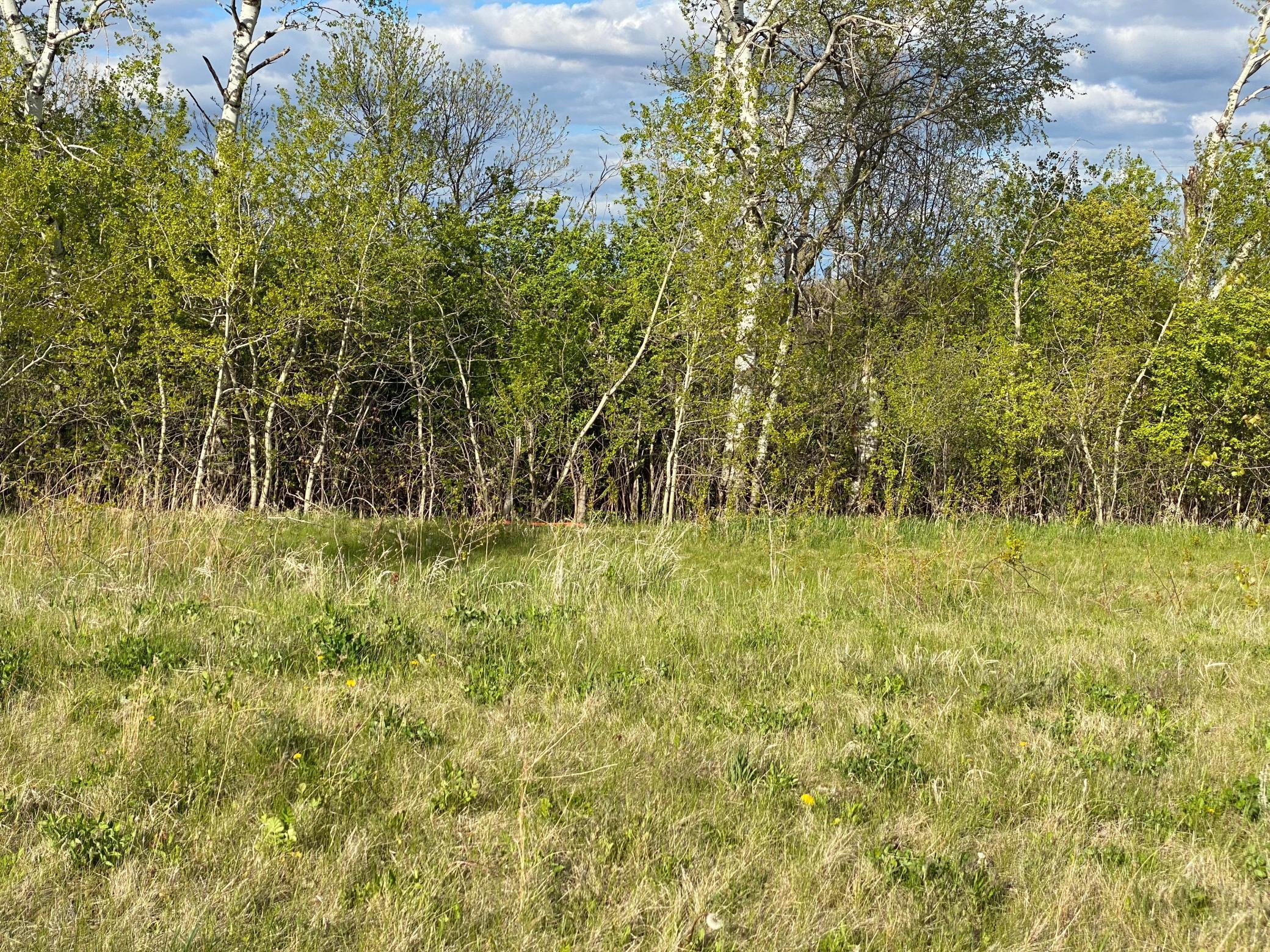 1424 Woodland Way Property Photo