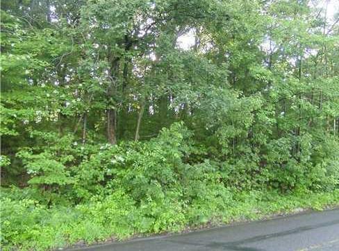 2.897 Acres London Road Property Photo - Eau Claire, WI real estate listing