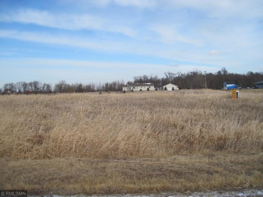 1111 108th Circle Property Photo - Glencoe, MN real estate listing