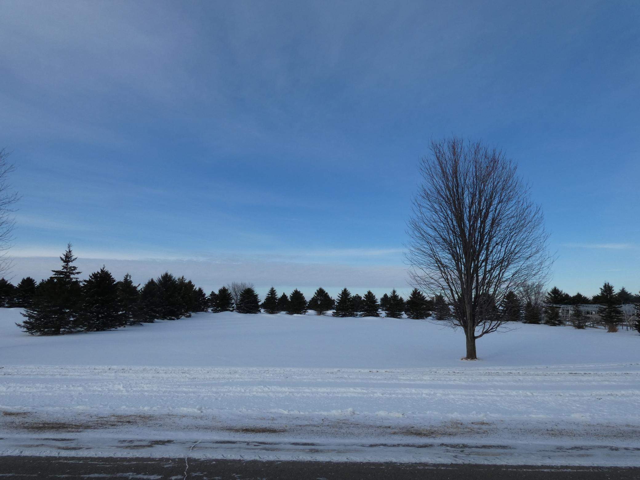 74 Valhalla Road Property Photo - Slayton, MN real estate listing