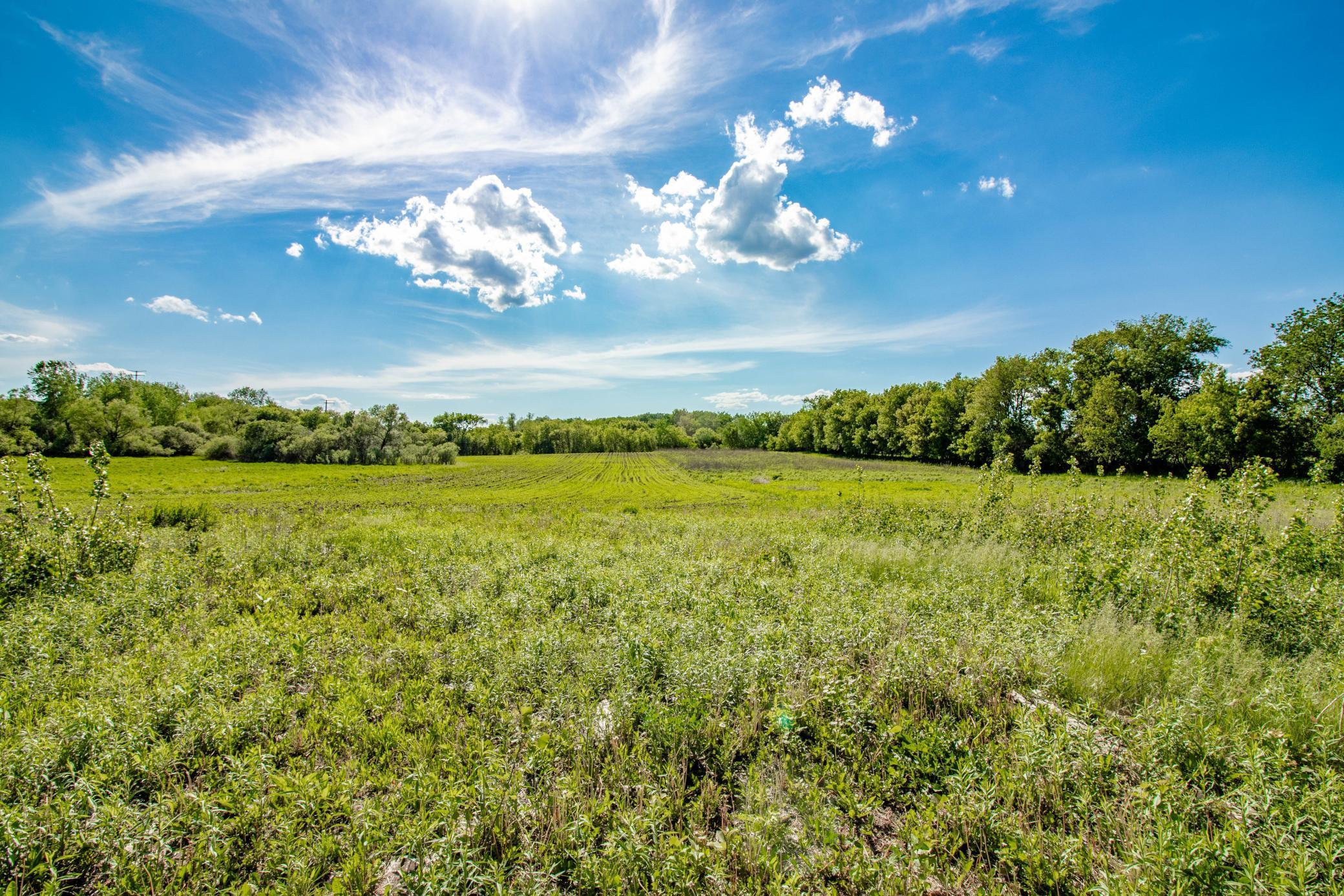 23700 Fairgreen Avenue Property Photo - Eureka Twp, MN real estate listing