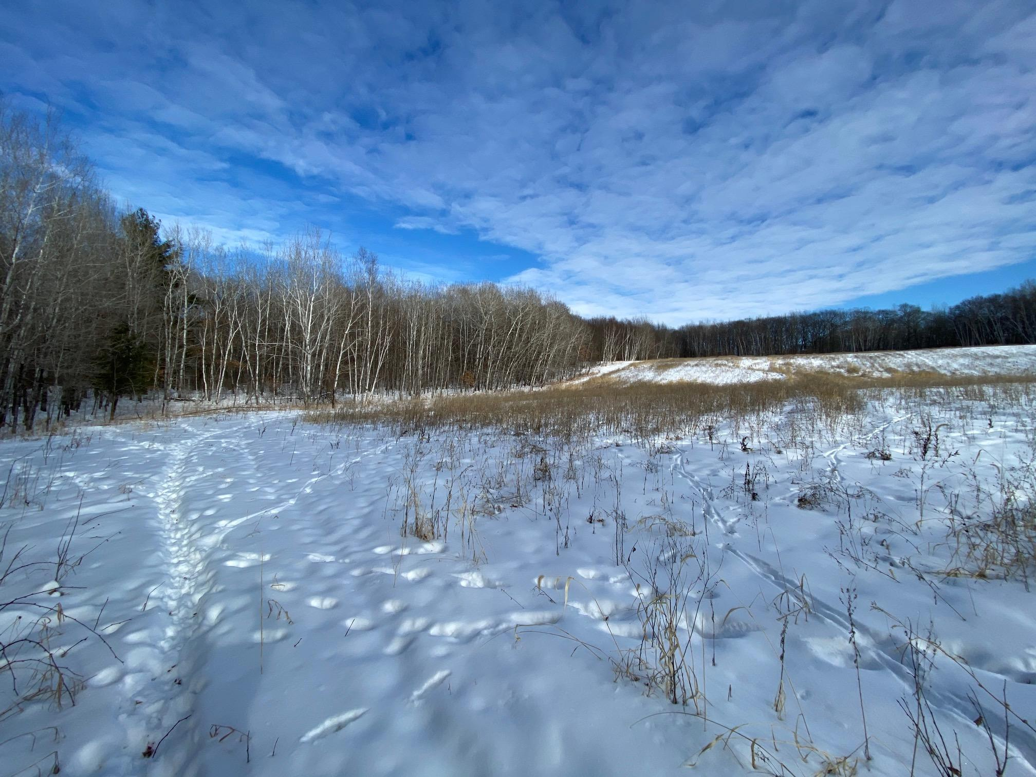 XXX Fisher Road Property Photo - Hillman, MN real estate listing
