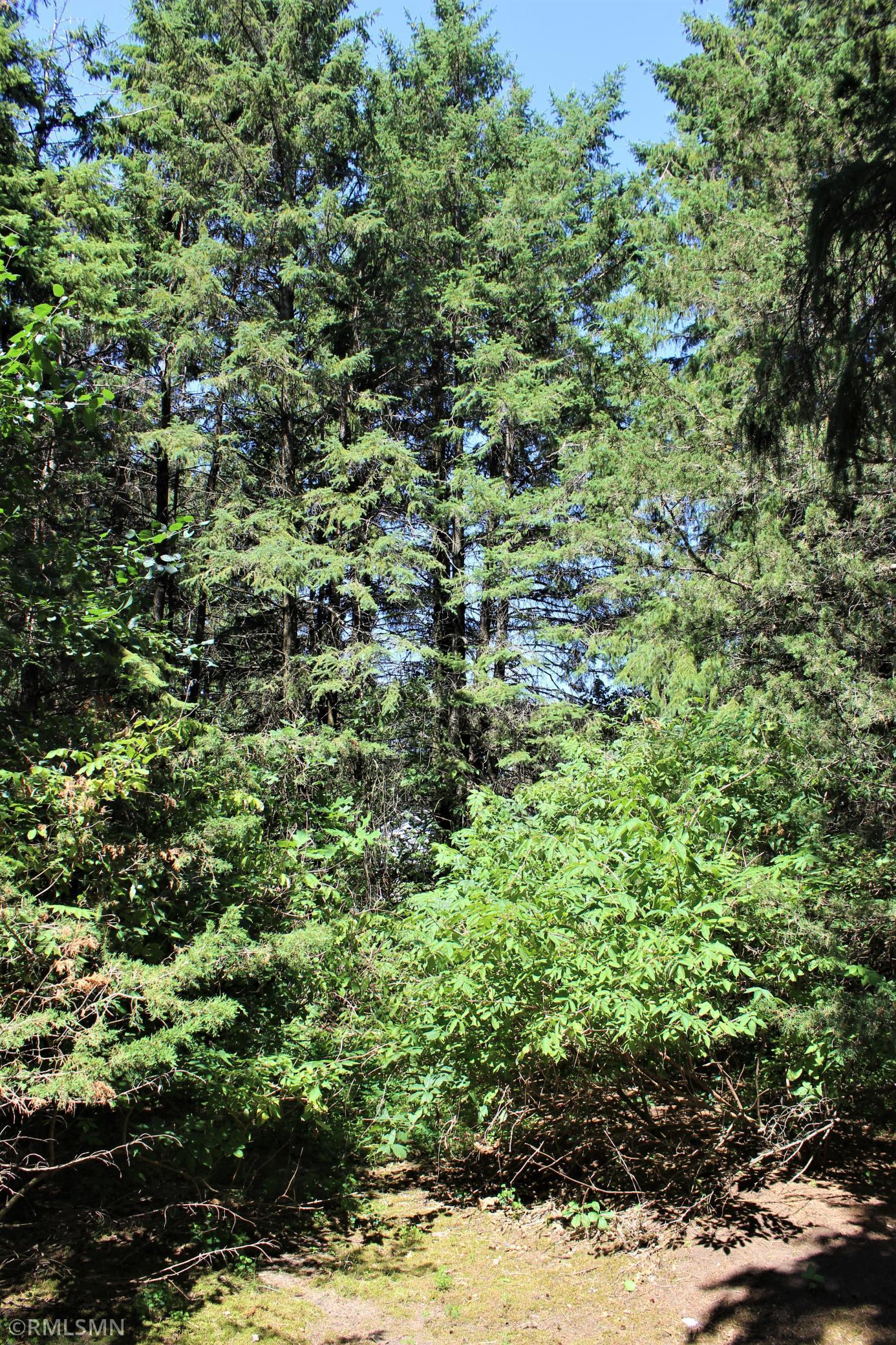 13xxx Brenda Boulevard SE Property Photo - Becker, MN real estate listing