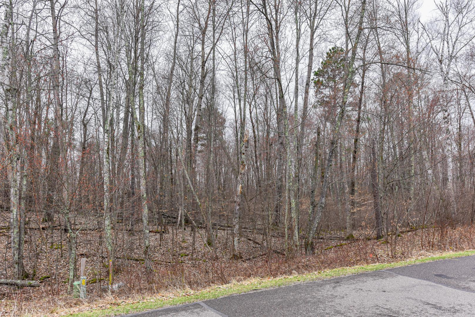 TBD Castle Wood Ct Property Photo - Breezy Point, MN real estate listing