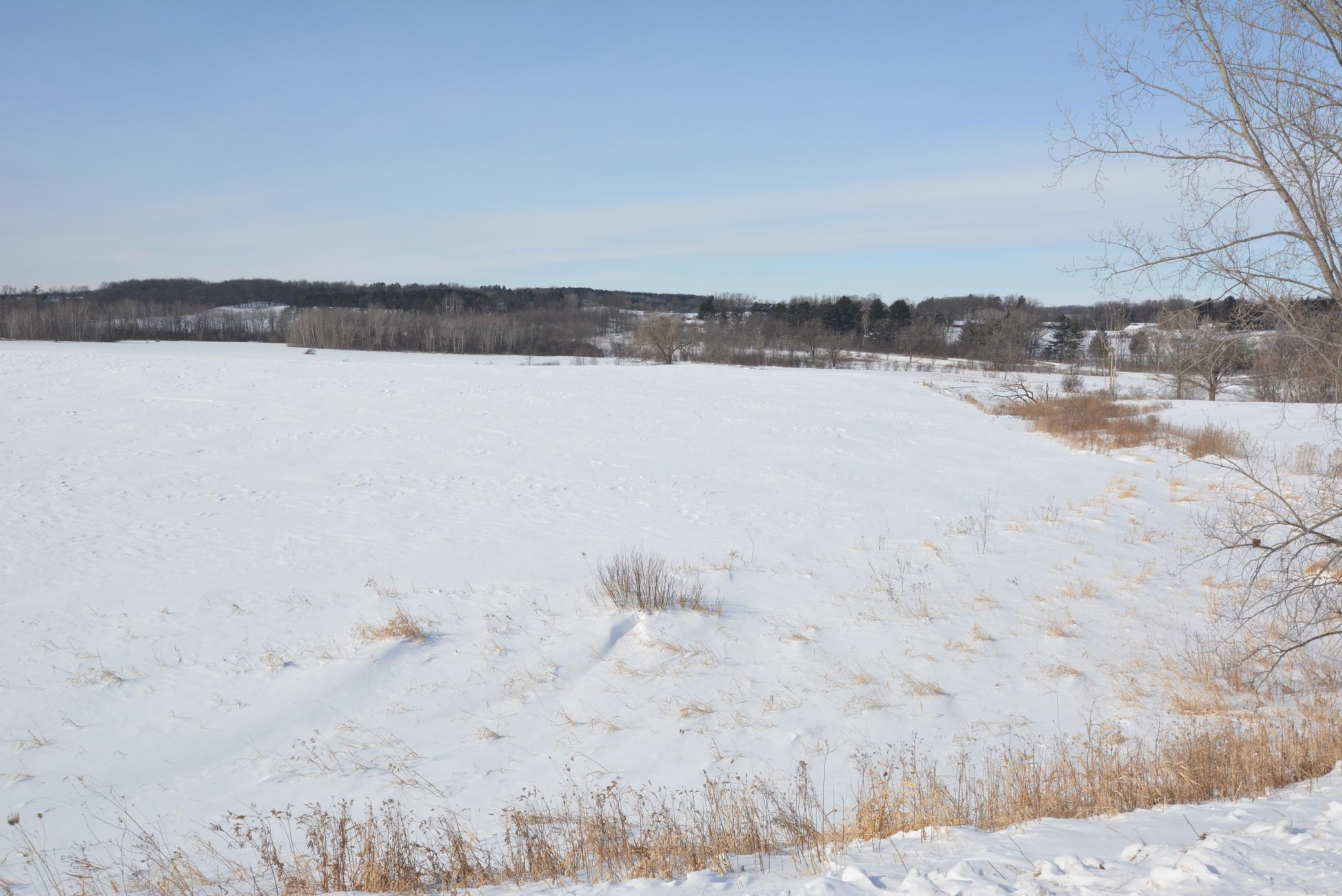 40 Acres Hwy 29 Property Photo - Gilman Twp, WI real estate listing