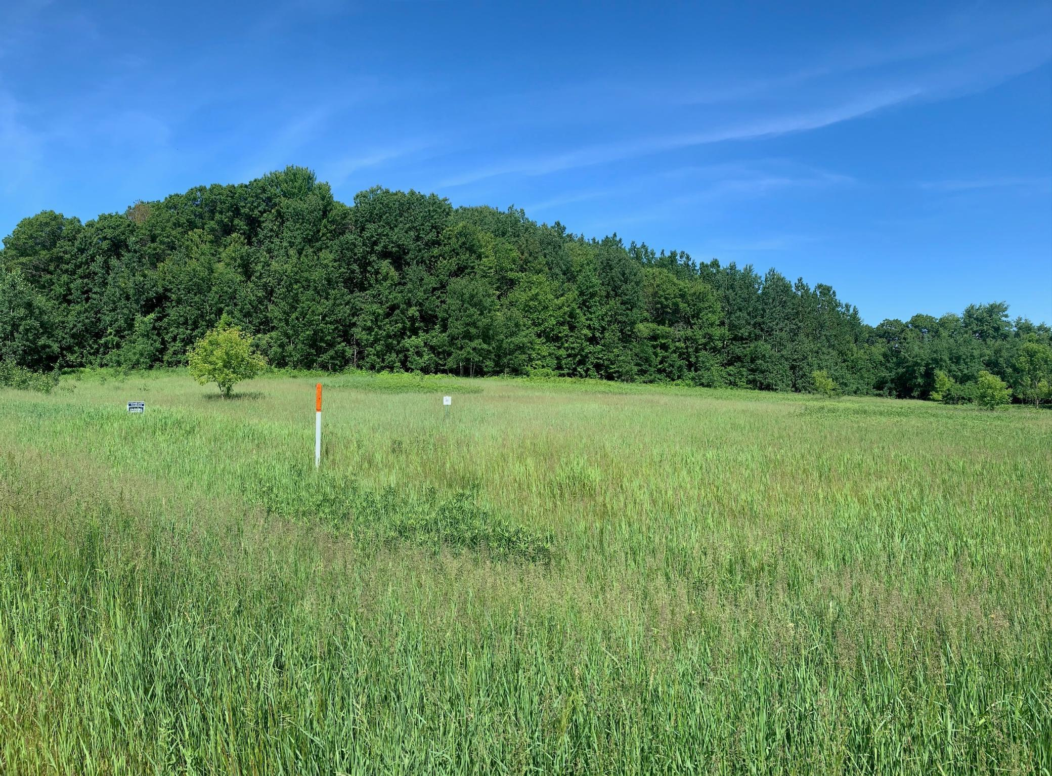 Lot 11 938th Street Property Photo - Elk Mound, WI real estate listing
