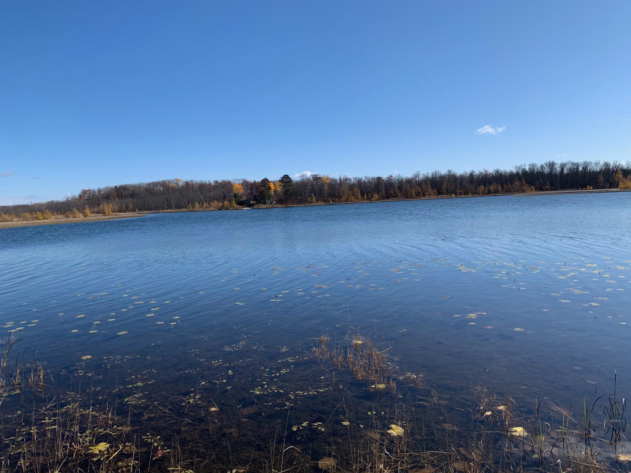 xxxx Tract 3 Baby Lake Property Photo - Hackensack, MN real estate listing