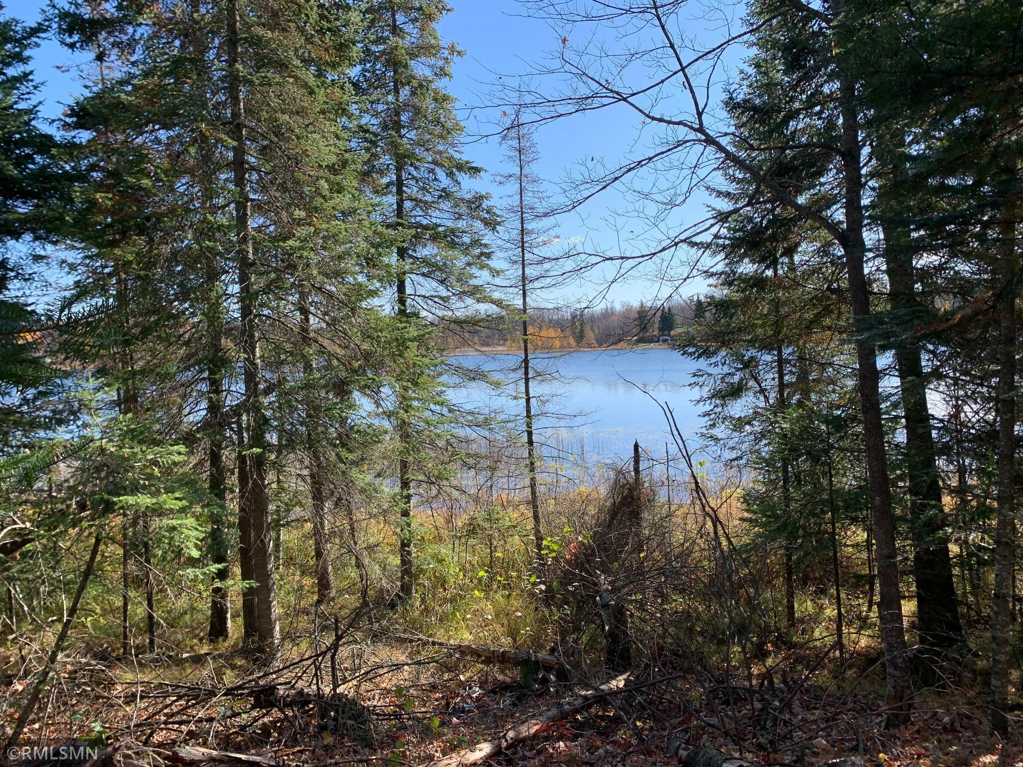 XXX Tract 4 Baby Lake Property Photo - Hackensack, MN real estate listing