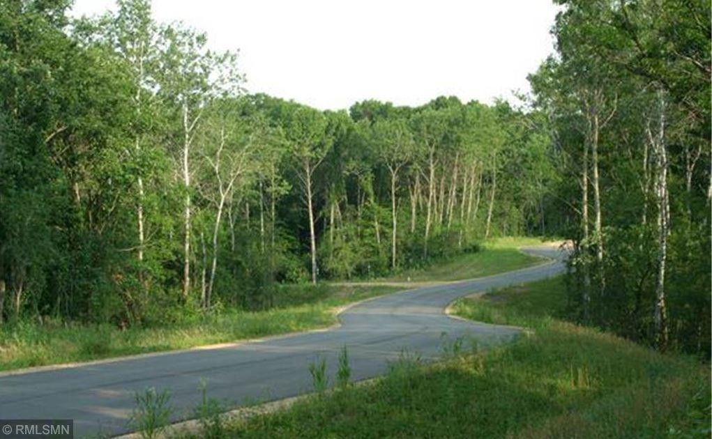 1368 Birch Park Road Property Photo - Hudson, WI real estate listing