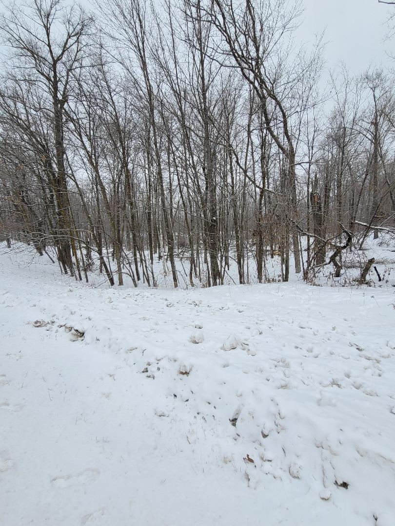 00 Highway 48 Lane Property Photo - Bone Lake Twp, WI real estate listing