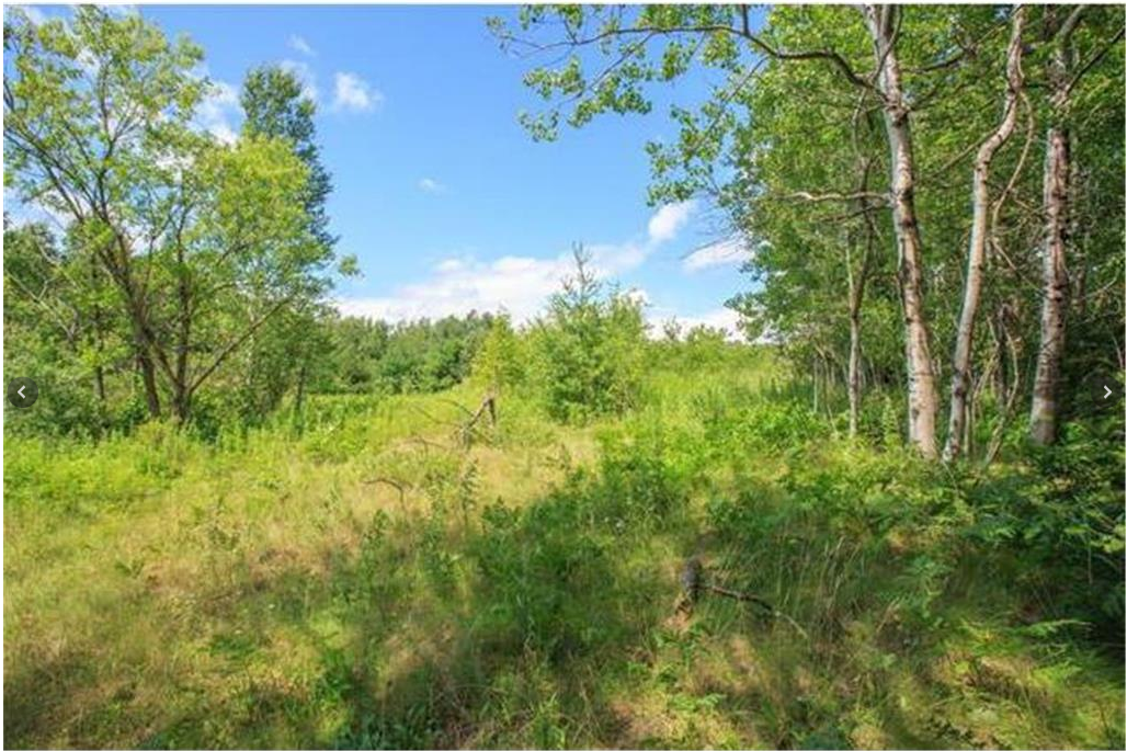 xxxx Hwy 61 Property Photo - Sandstone, MN real estate listing
