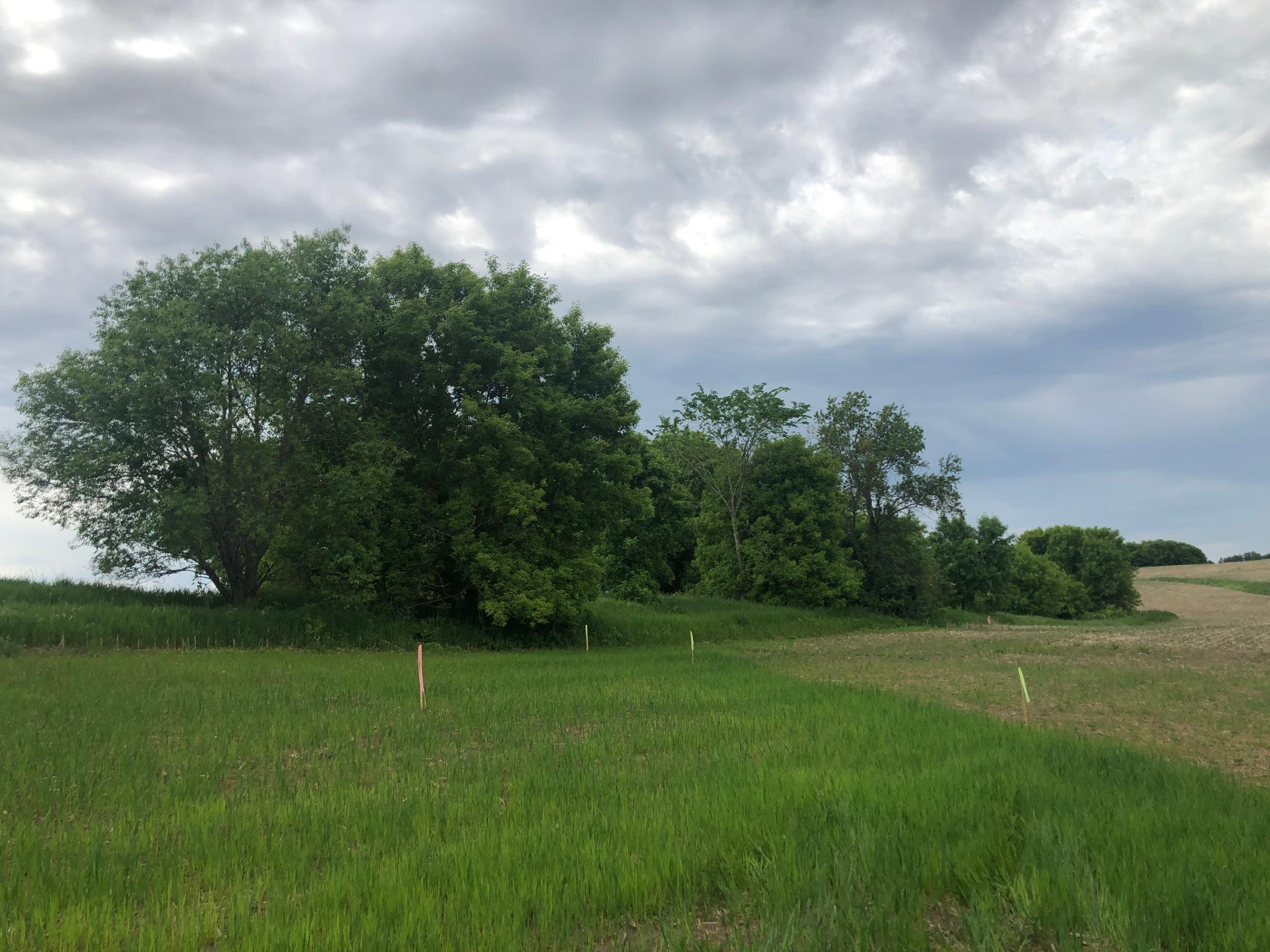 Lot 12 84th Avenue Property Photo - Roberts, WI real estate listing