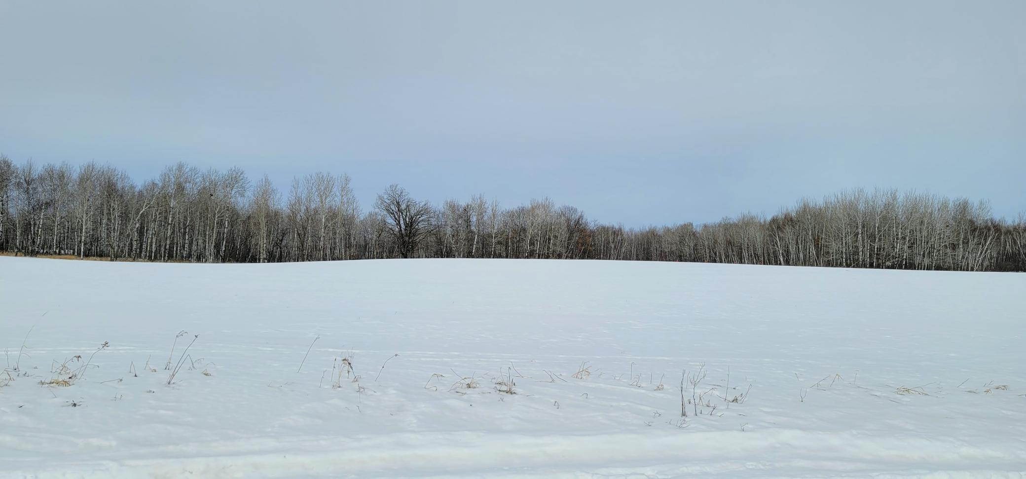 XX 250th Avenue Property Photo - Brook Park, MN real estate listing