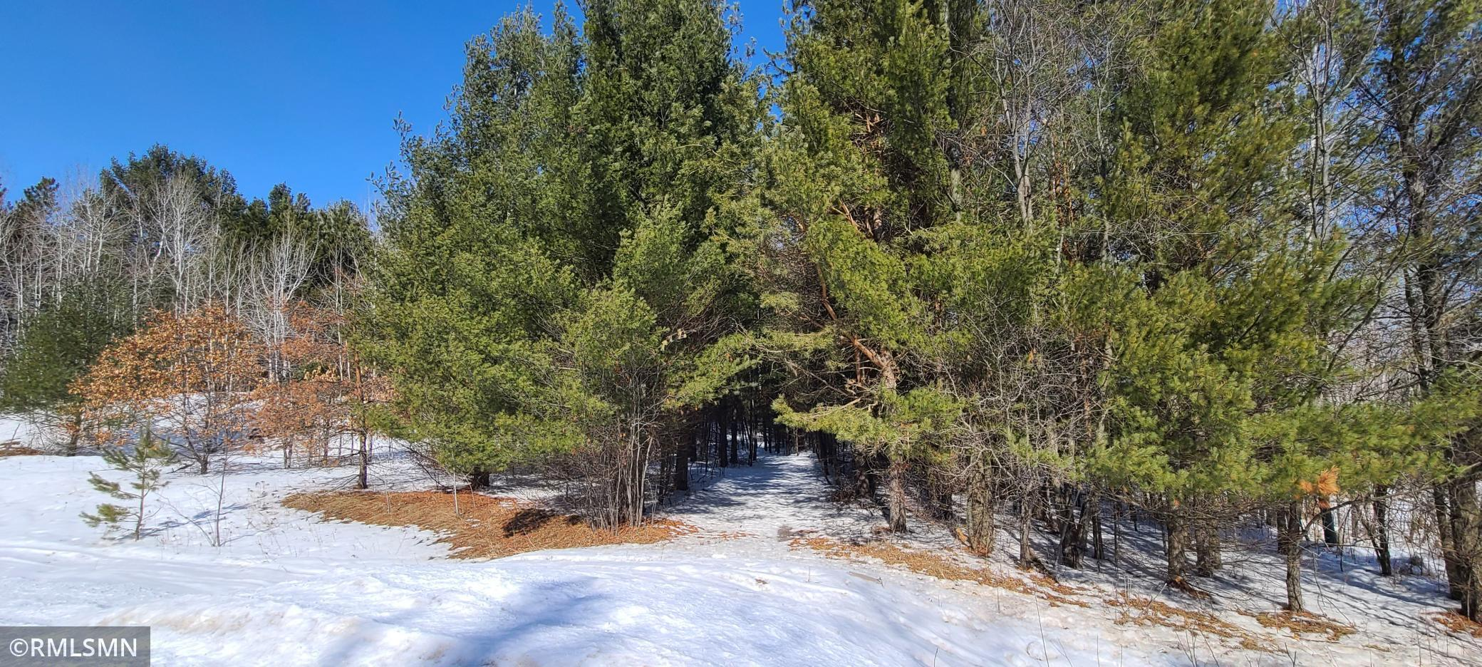 xxx 170th Avenue Property Photo - Comfort Twp, MN real estate listing
