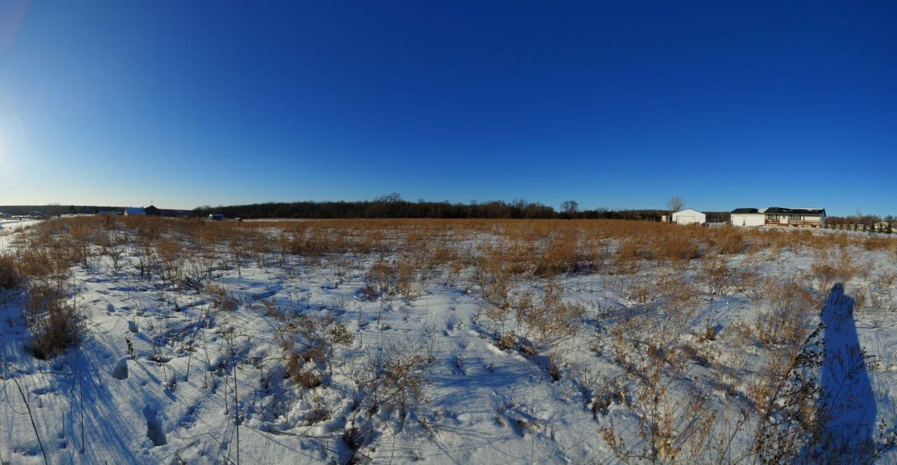xxxxx 336th Street Property Photo - Shafer Twp, MN real estate listing