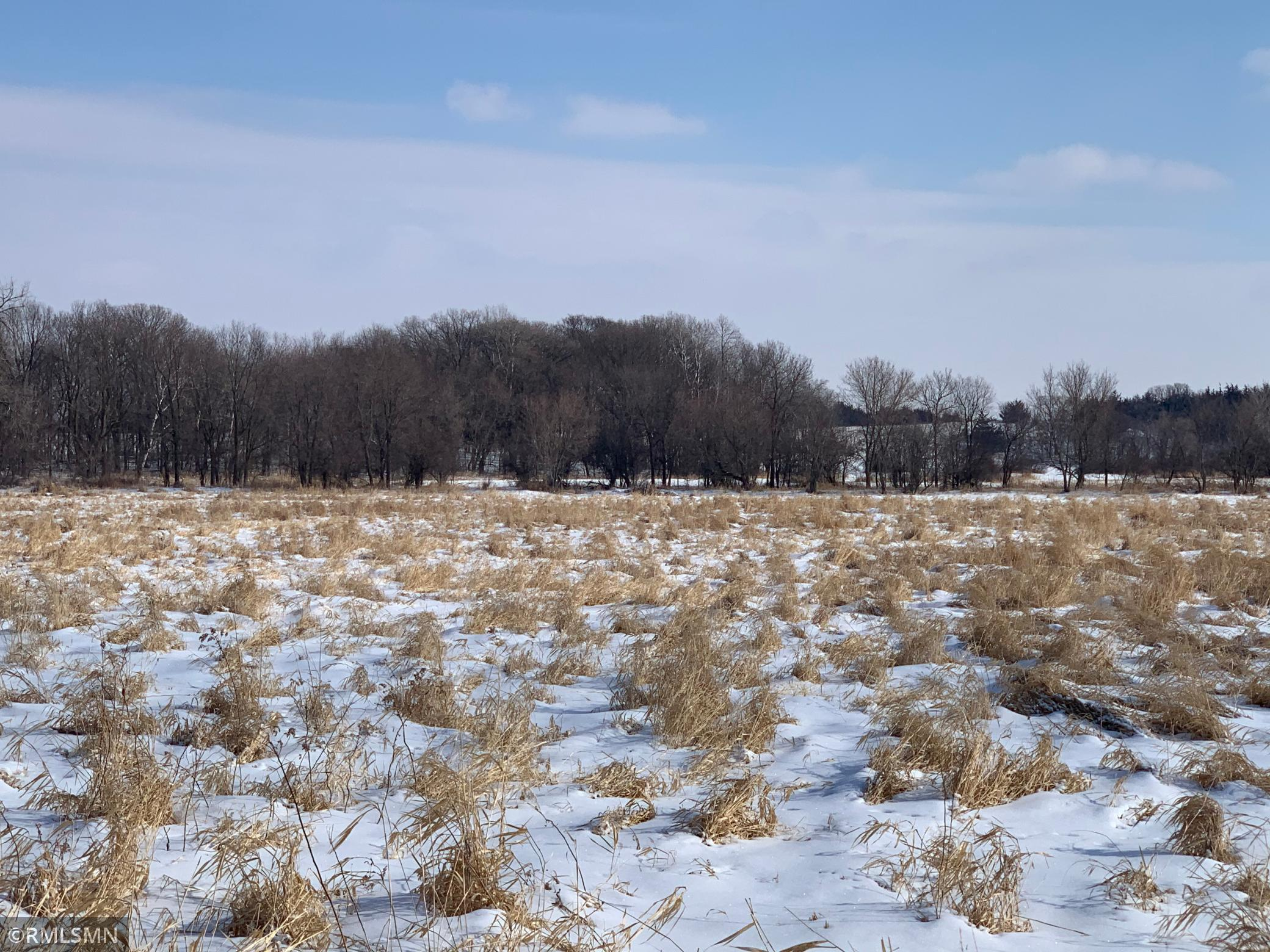 26759 NW 18th Street Property Photo - Belgrade, MN real estate listing