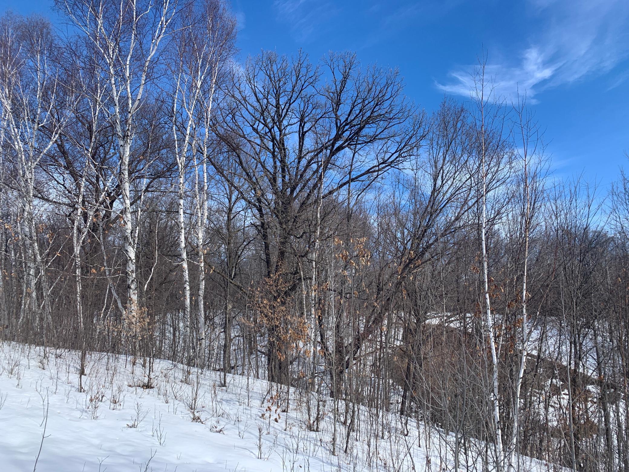 NA Ravine Road Property Photo - Rock Creek, MN real estate listing