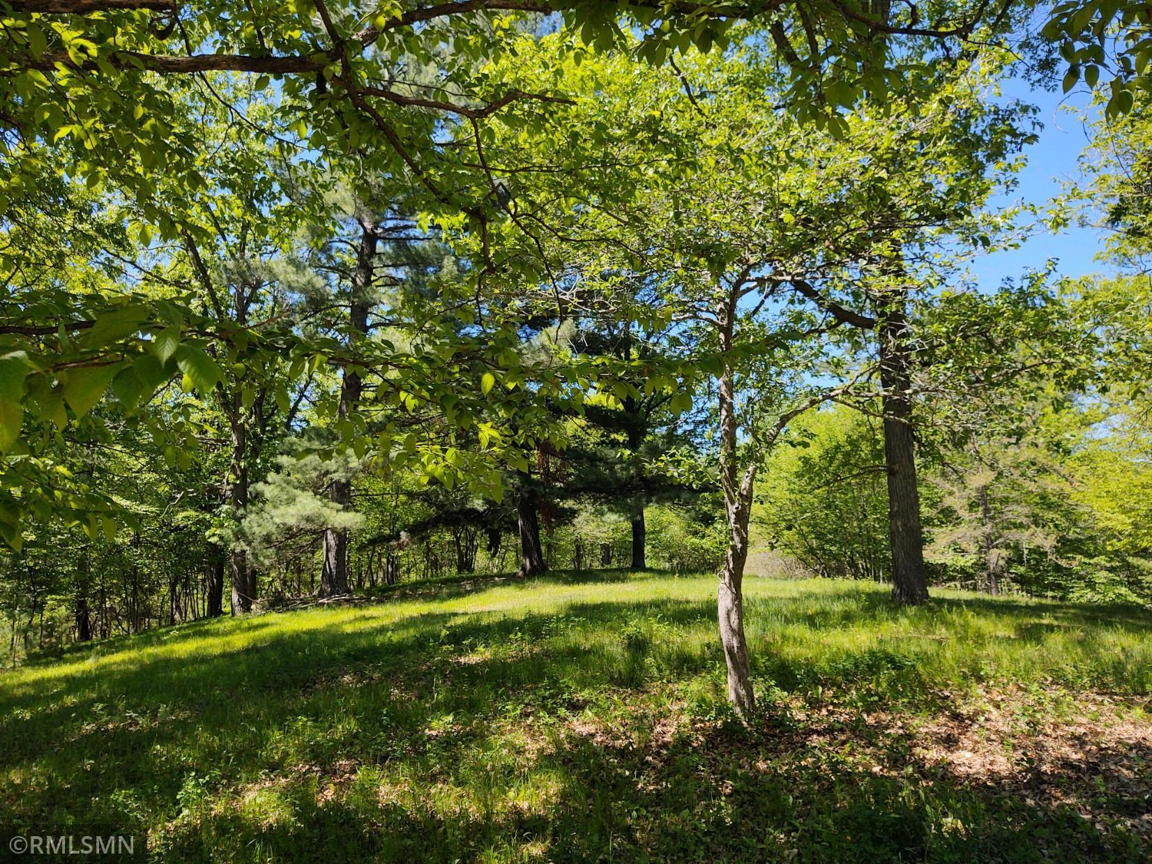 Tbd County Road 23 Property Photo 1