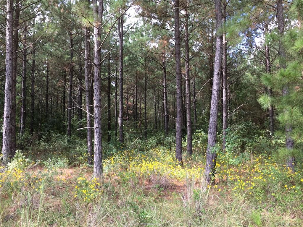 0 Rural Road, Princeton, LA 71067 - Princeton, LA real estate listing