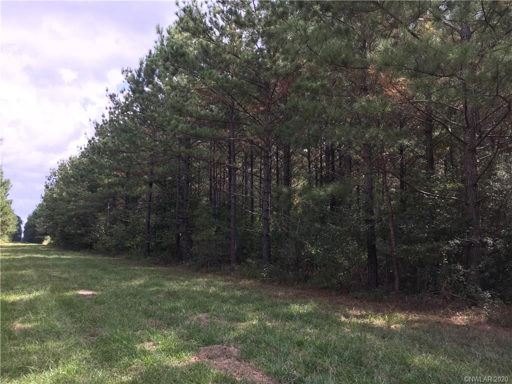 1 Rural, Princeton, LA 71067 - Princeton, LA real estate listing