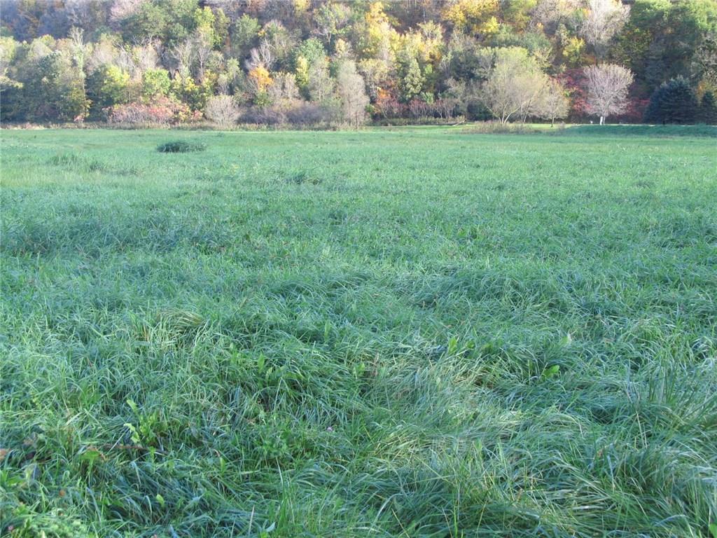 607 Wildcat Drive Property Photo