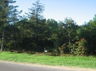 Lot 14 Black River Ridge Drive Property Photo - Melrose, WI real estate listing