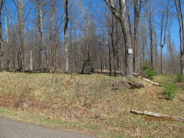 ------------- W Old Hwy. J Road, Winter, WI 54896 - Winter, WI real estate listing