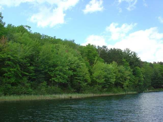Lot 14 Pine Lake Road Property Photo - Iron River, WI real estate listing