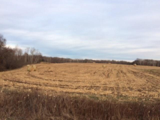 Lot 2 230th Street, Osceola, WI 54020 - Osceola, WI real estate listing
