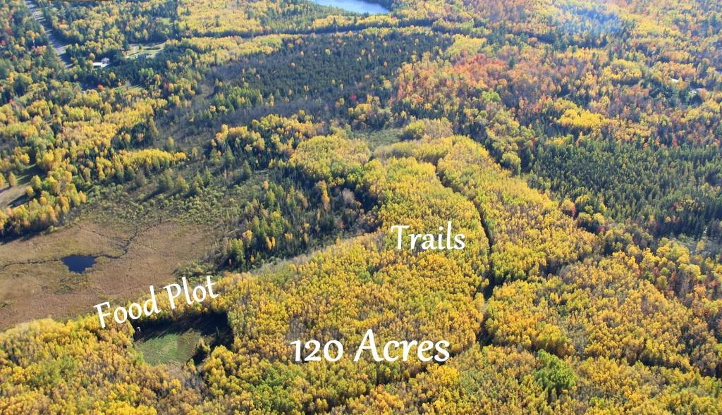 120 acres Lake of the Falls Road Property Photo - Mercer, WI real estate listing
