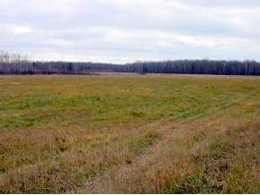 5 Acres on Circle Rd., Glen Flora, WI 54526 - Glen Flora, WI real estate listing
