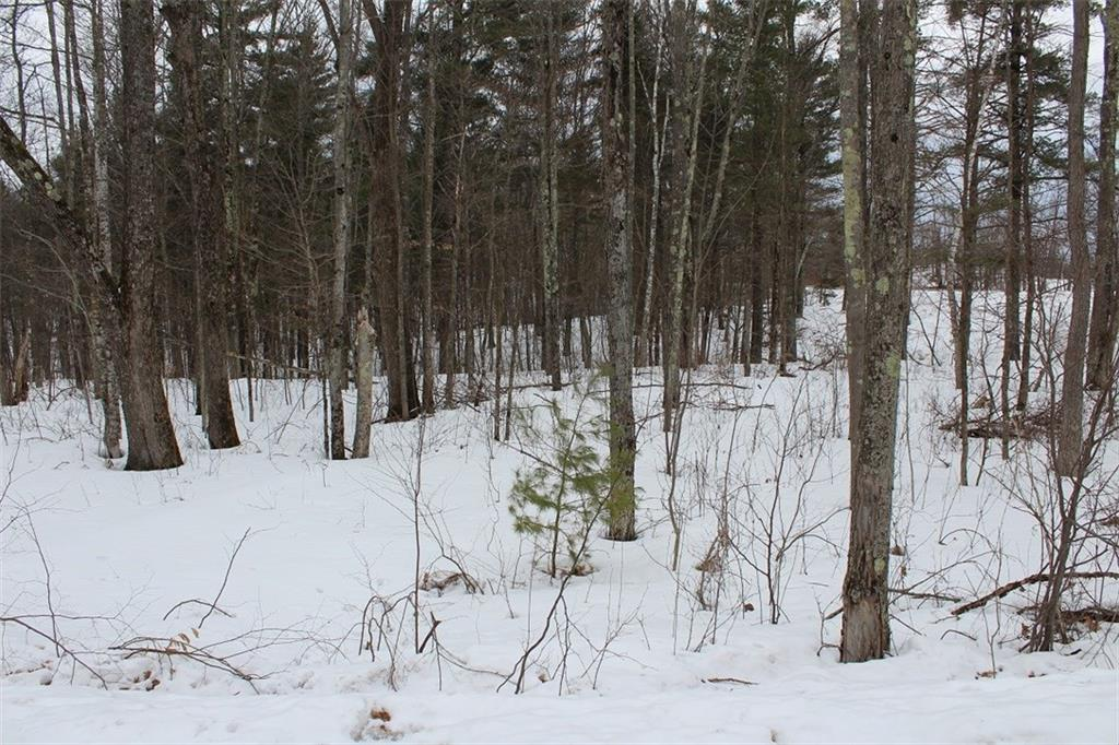 Lot 2 Hidden Woods Dr Property Photo - Hayward, WI real estate listing