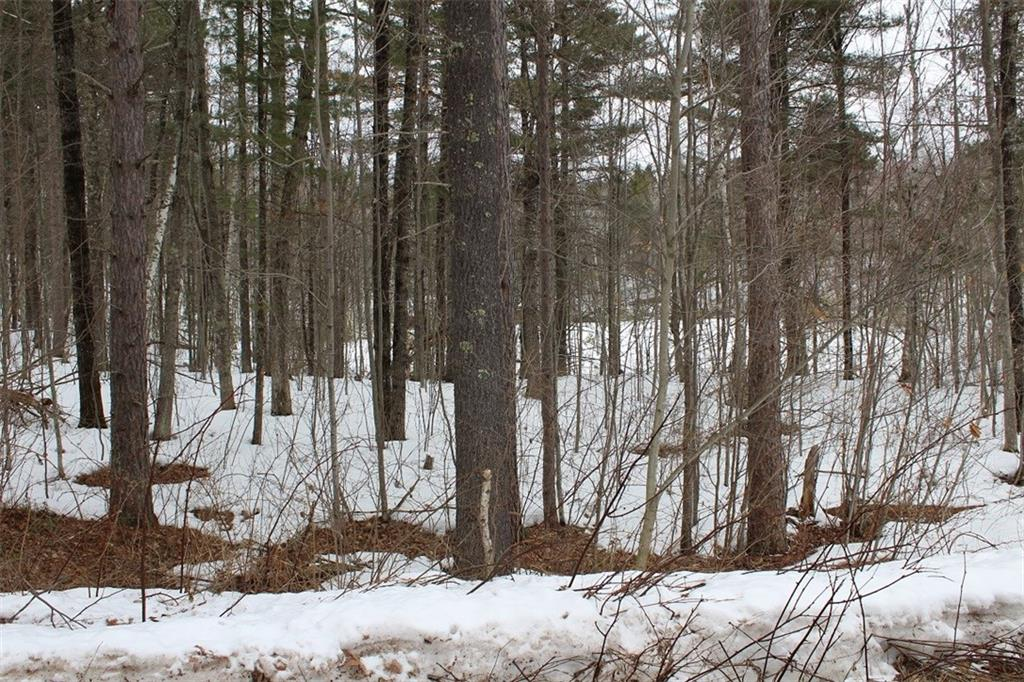 Lot 8 Hidden Woods Dr Property Photo - Hayward, WI real estate listing