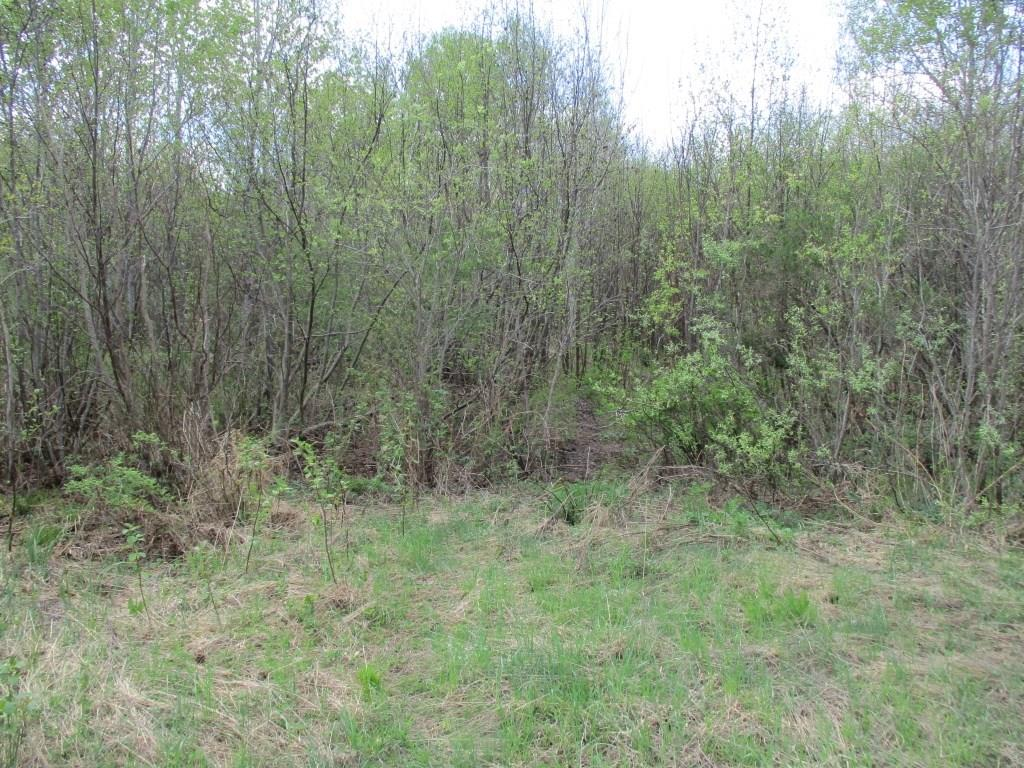 Lot 2 Dorscheid Road, Ojibwa, WI 54862 - Ojibwa, WI real estate listing
