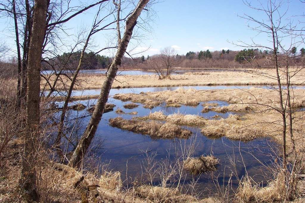 Lot 1 301st Street, Eau Galle, WI 54737 - Eau Galle, WI real estate listing