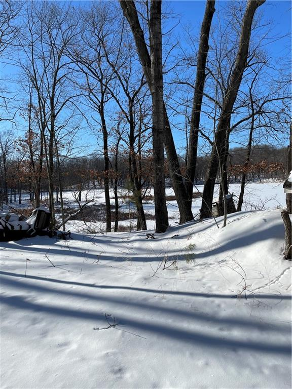 LOT 4 151ST Street Property Photo - New Auburn, WI real estate listing