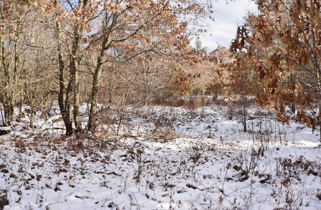 6.06 Acres Clearview Drive Property Photo - Black River Falls, WI real estate listing