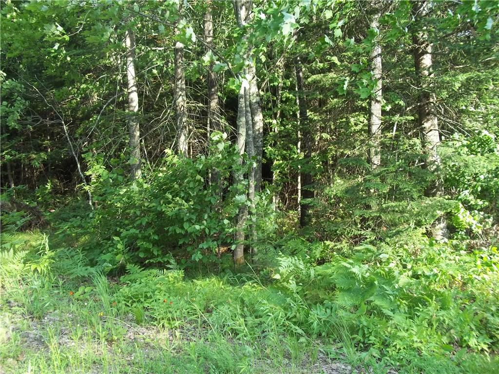 50290 Blue Moon Road Property Photo - Drummond, WI real estate listing