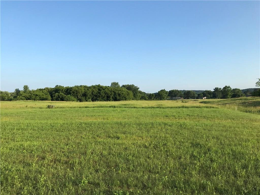 Lot 35 W 3rd Avenue Property Photo - Eleva, WI real estate listing