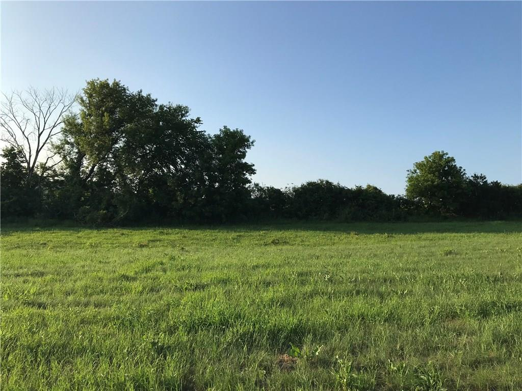 Lot 4 W 3rd Avenue Property Photo - Eleva, WI real estate listing