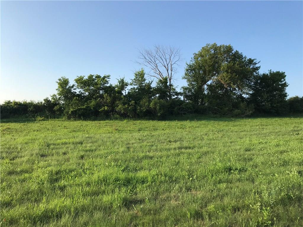 Lot 3 W 3rd Avenue Property Photo - Eleva, WI real estate listing