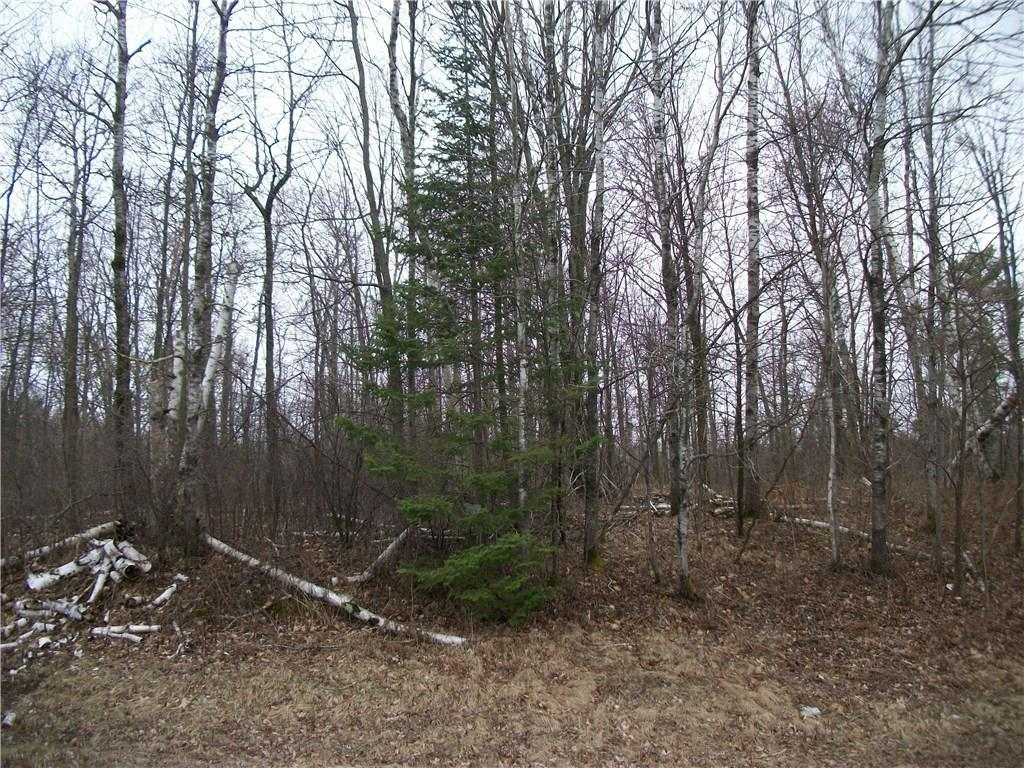 Lot 36 Loch Lomond Property Photo - Birchwood, WI real estate listing