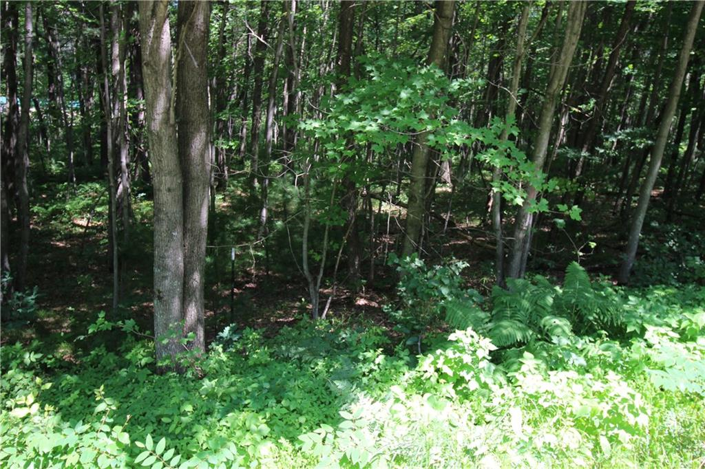 LOT 2 ROCKIE RD Property Photo - Fall Creek, WI real estate listing