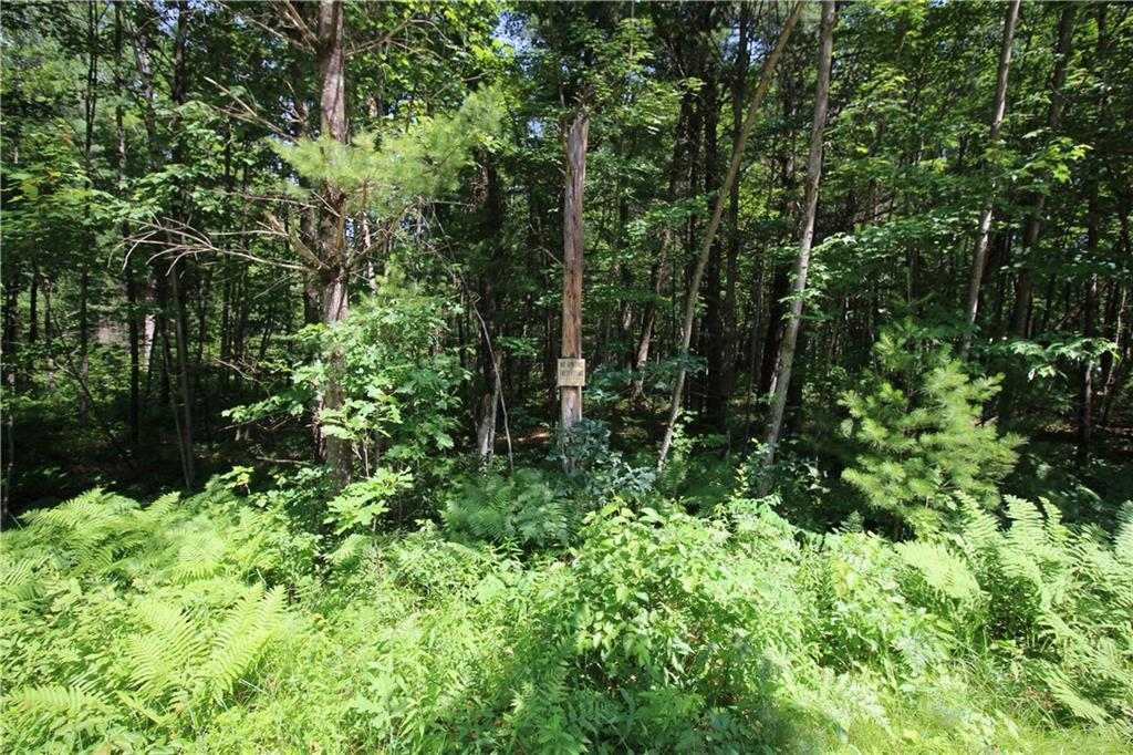 LOT 4 ROCKIE RD Property Photo - Fall Creek, WI real estate listing