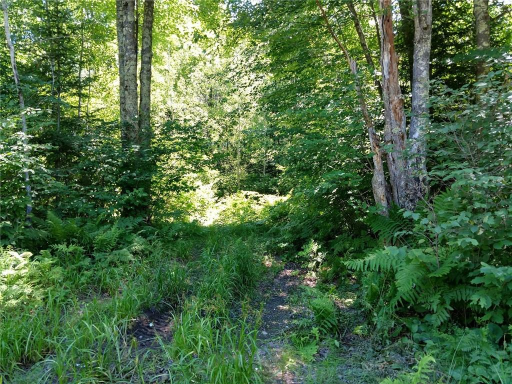 0 N McFarland Road Property Photo - Exeland, WI real estate listing