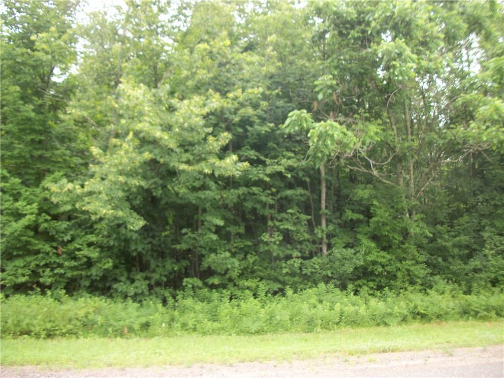 Lot 102 Loch Lomond Property Photo - Birchwood, WI real estate listing
