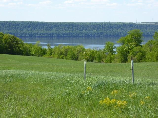 16 Acres 440th Street, Maiden Rock, WI 54750 - Maiden Rock, WI real estate listing