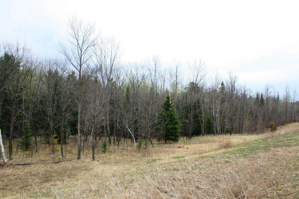 TBD US Hwy 53 Property Photo - Solon Springs, WI real estate listing